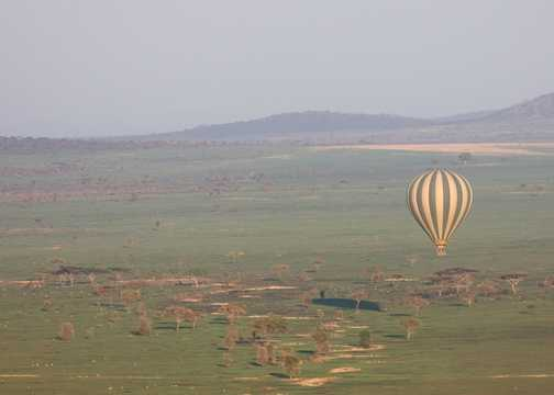 Serengeti Balloon