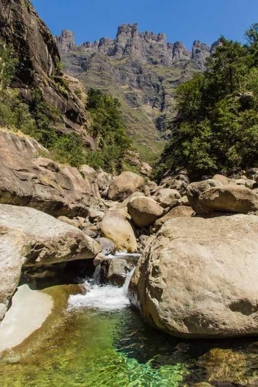 Cattle cart - Malealea, Lesotho