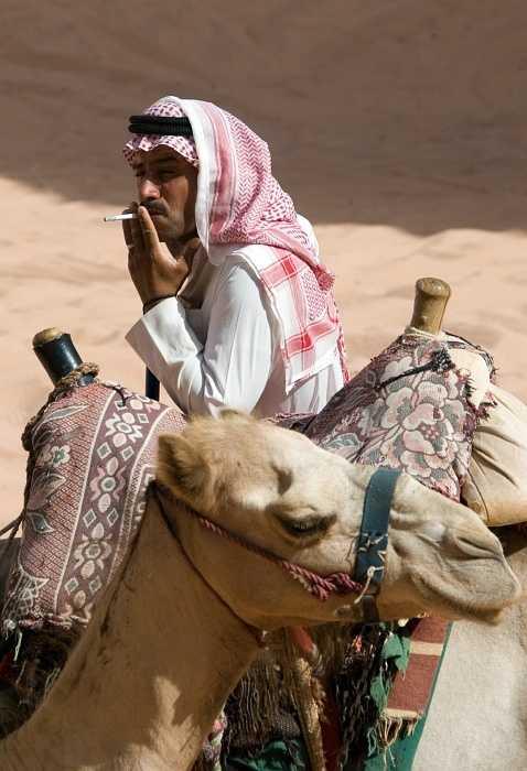 Cool locals - Wadi Rum