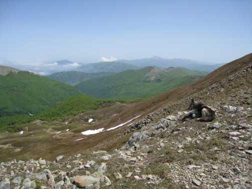 View from Monte Prado