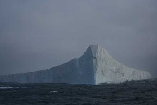 One of many huge icebergs we viewed from the safety of the Vavilov