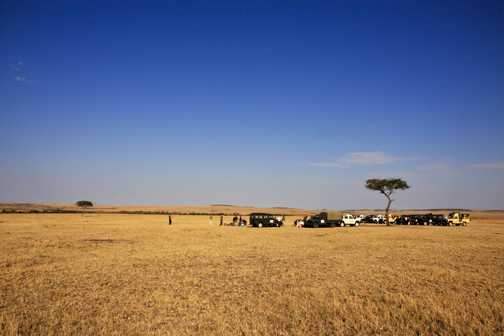 Breakfast in the Mara