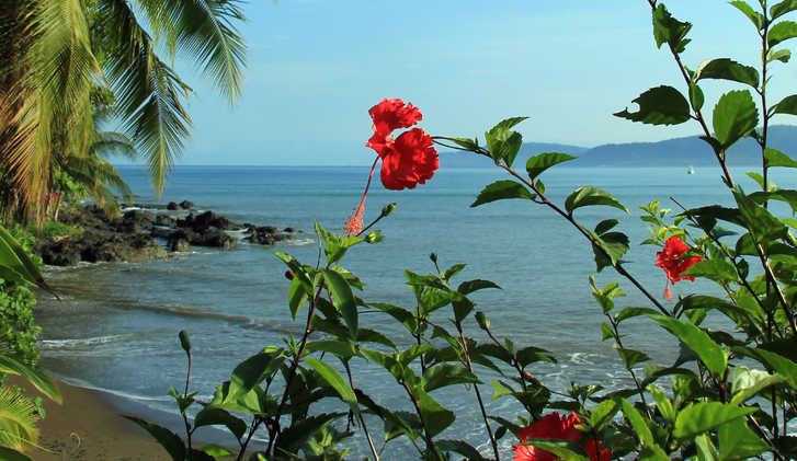 View to Drake Bay, Osa Peninsula, Costa Rica