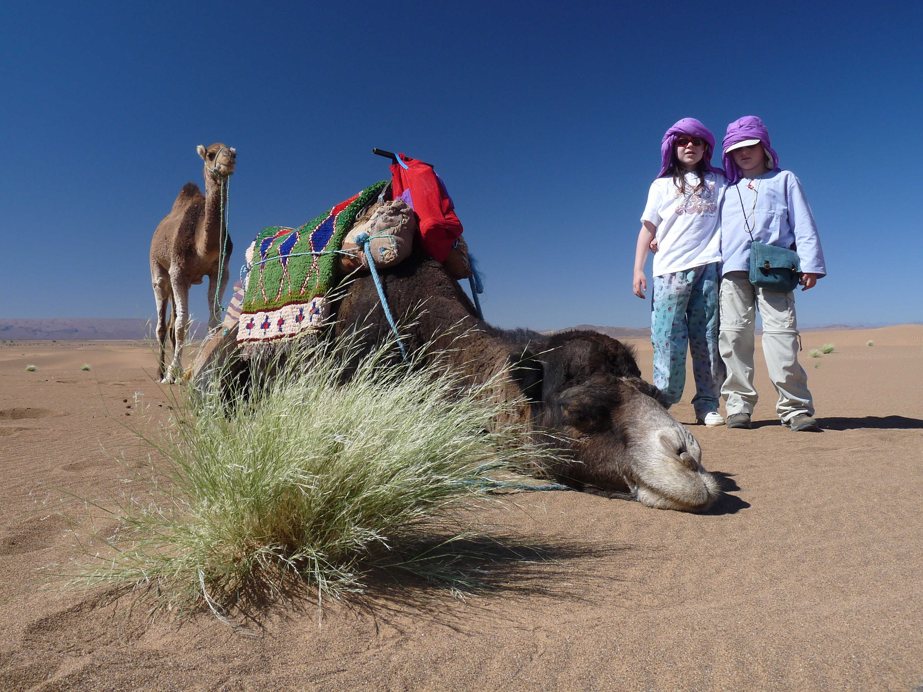 Children about to go camel trekking