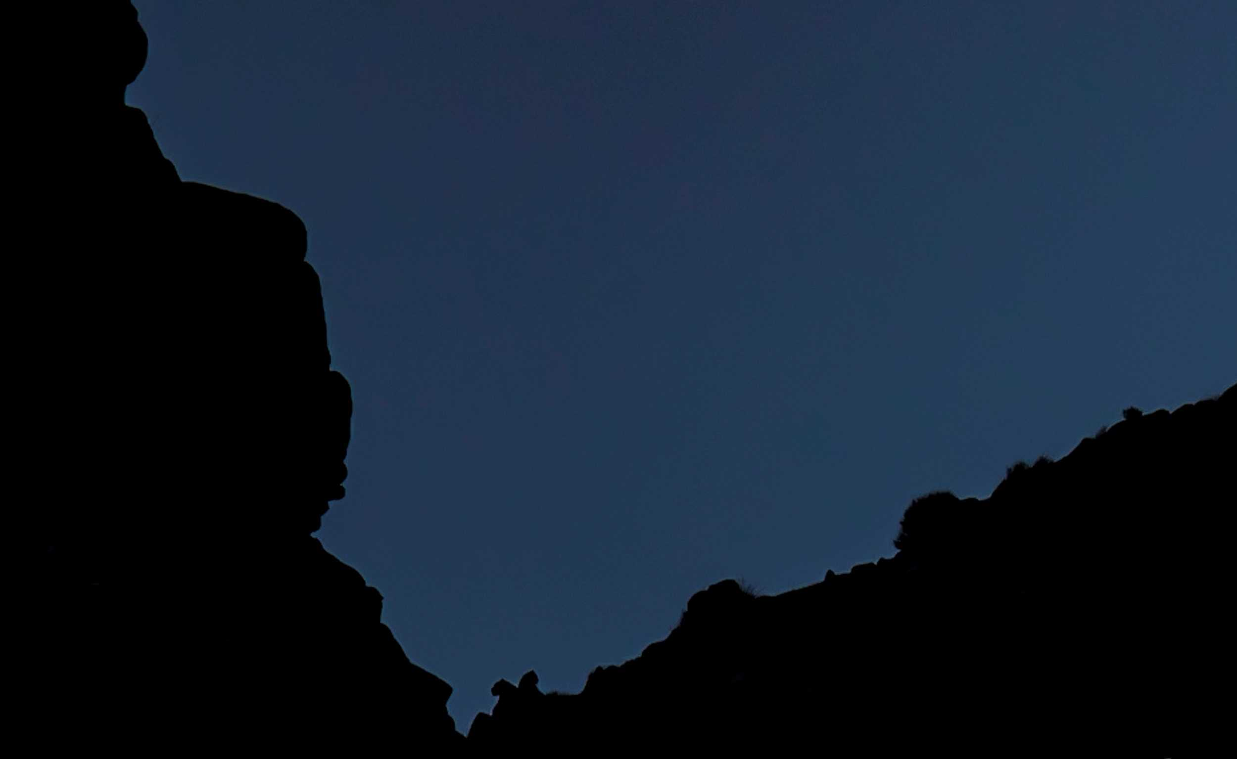 Silhouettes of two Snow Leopards in Ladakh (Image by Paul Goldstein)